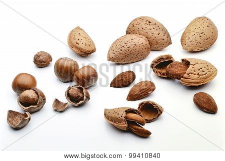 Hazelnuts And Almonds
