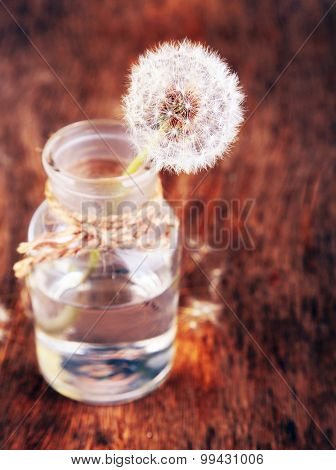 Dandelions flower on old wooden background