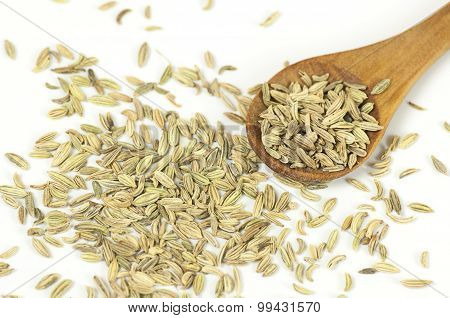 Fennel Seeds Close Up