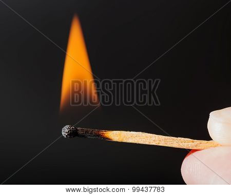 Flame Of Lighted Wooden Match