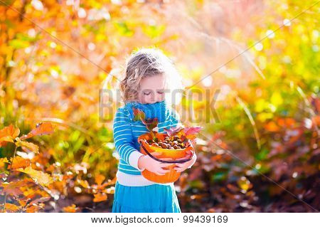 Little Girl Picking Acorns In Autumn Park