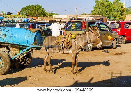 Marketplace In Al Quwaysi In Sudan