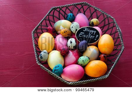 Colorful Chicken and Quail Easter Eggs