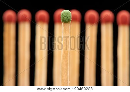 Green match standing in front of defocused set of eight red wooden matches isolated on black