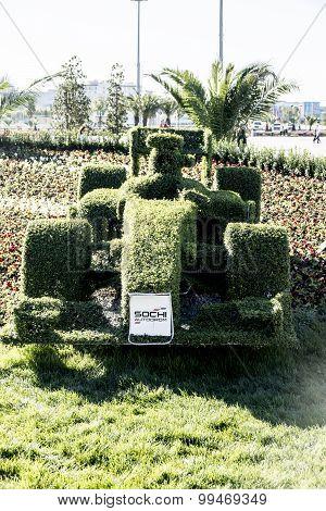 Topiary-race Car.
