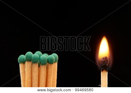 Group of green wooden matches standing with burning match isolated on black