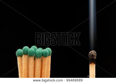 Group of green wooden matches standing with burnt smoked match isolated on black