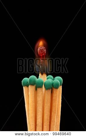 Group of green wooden matches with burning match in centre