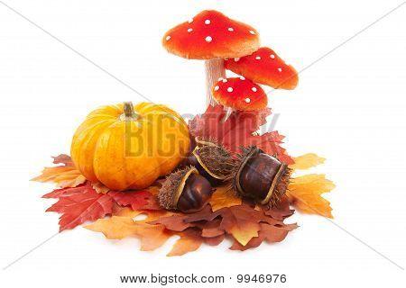 Pumpkin, Chestnuts, Mushroom And Fake Autumn Leaves