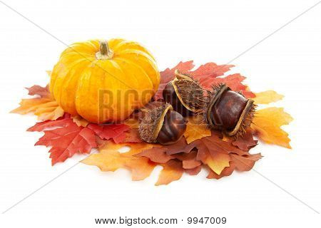 Pumpkin, Chestnuts And Fake Autumn Leaves