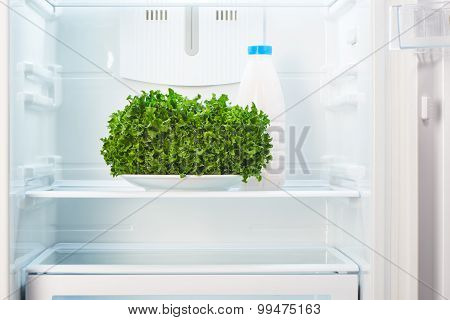 Green salad on white plate and a glass bottle of yoghurt in open empty refrigerator