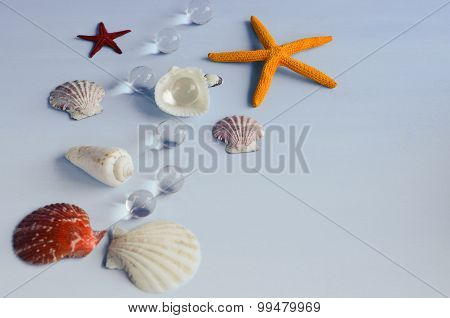 Marine Decoration With Shells, Starfish And Water Drops