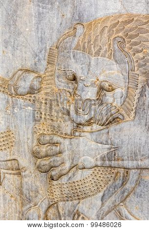 Lion relief detail Persepolis