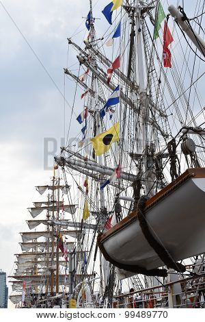 Sail 2015 in the port of Amsterdam