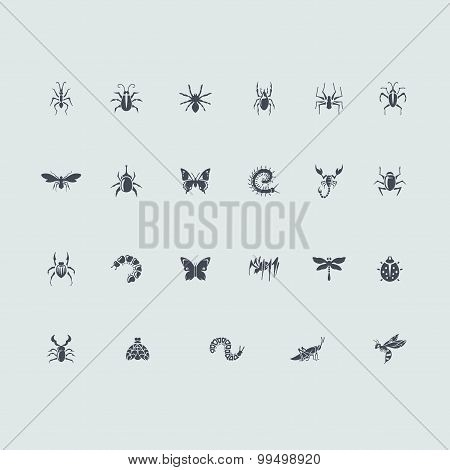 Set of insects icons