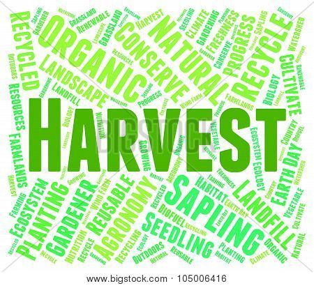 Harvest Word Means Produce Grain And Harvests