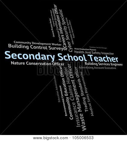 Secondary School Teacher Means Give Lessons And Academies