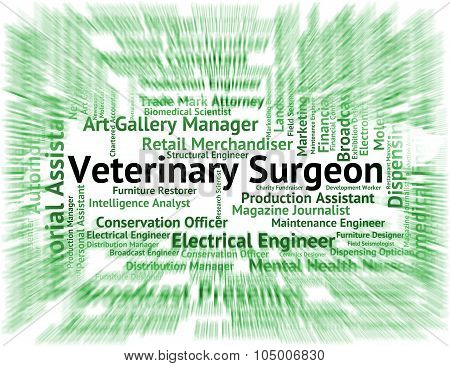 Veterinary Surgeon Means Veterinarian Text And Words
