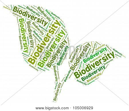 Biodiversity Word Means Plant Life And Biodiverse