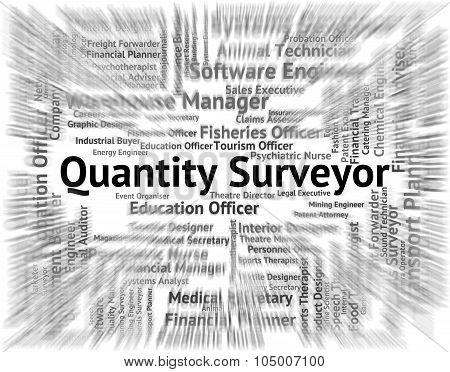 Quantity Surveyor Indicates Text Word And Employment