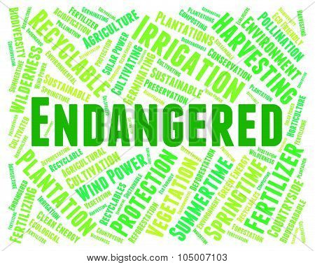 Endangered Word Represents At Risk And Endangers