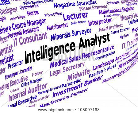 Intelligence Analyst Indicates Intellectual Capacity And Ability
