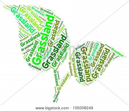 Grassland Word Represents Environment Grasslands And Lawn