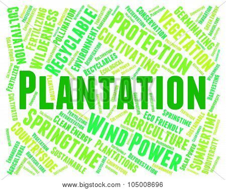 Plantation Word Means Agriculture Ranch And Hacienda