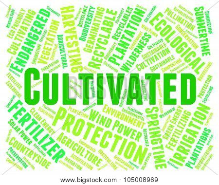 Cultivated Word Indicates Words Cultivation And Text