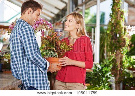 Happy couple buying a plant (codiaeum variegatum) in a garden center