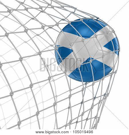 Scottish soccerball in net