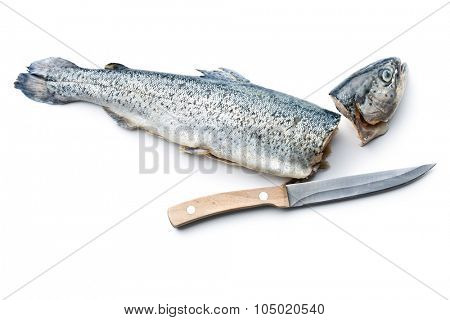 the gutted trout with knife on white background