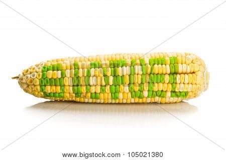 Concept Of Corn Maize With Biofuel On Corn Seeds Kernels