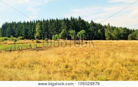 Rural Romania.