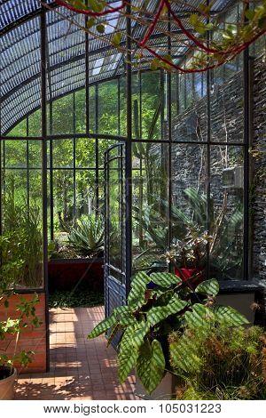 Old Stylish Greenhouse