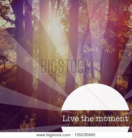Inspirational Typographic Quote - Live the moment