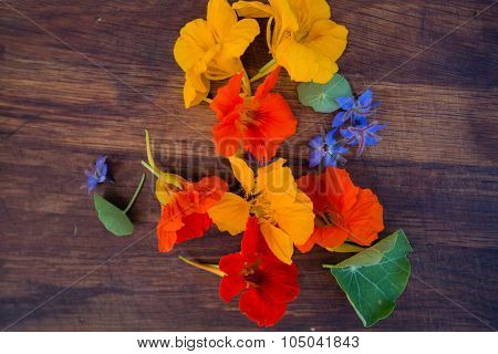 Colorful Edible Flowers On Wooden Background. Bright Nasturtium Flowers And Borage. Healthy Organic