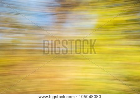 motion blur abstract of golden fall foliage ans sky