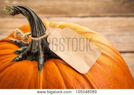 pumpkin with a blank paper price tag - Halloween or Thanksgiving holiday shopping concept