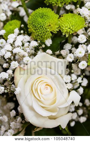 White Rose In Bouquet Close Up