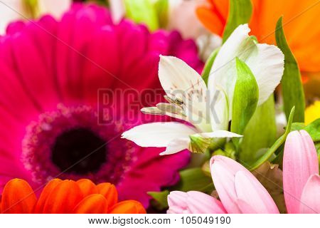 White Lily Bloom In Gerbera Flowers Bouquet