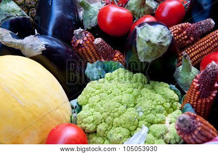 Group Of Fruit And Vegetables Made Up Of Tomatoes, Eggplants, Carrots, Corn And Cauliflower
