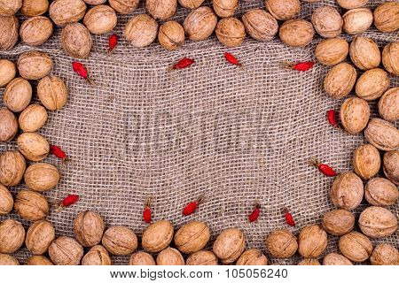 Background From Walnuts And Dogrose On Burlap