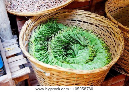 Betel Nut Leaves