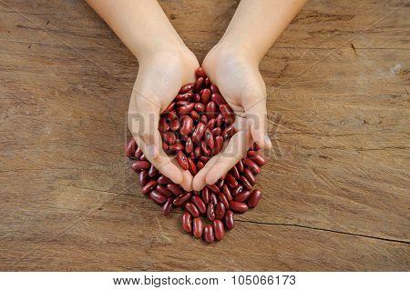 Dry Red Bean Grain