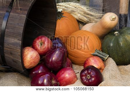 Holiday Autumn Apples And Pumpkins