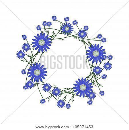 Beautiful Blue Daisy Wreath on White Background