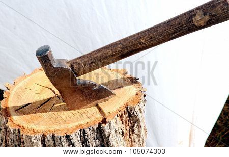 Hatchet in tree stump.