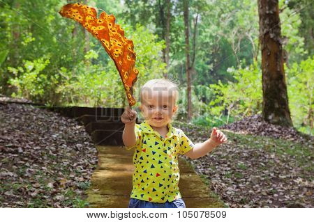 Little Baby Boy Carrying Giant Fallen Leaf Walk In Park