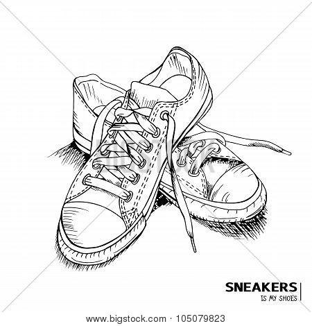 Hand Drawn Fashion Sneakers With Title 'Sneakers Is My Shoes'